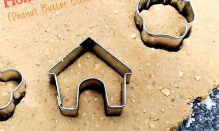 Pumpkin Peanut Butter Banana Homemade Dog Treats